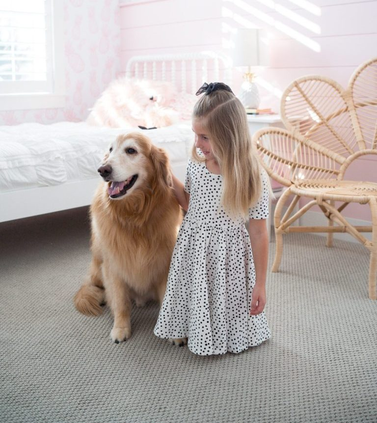 Girl petting dog on carpet