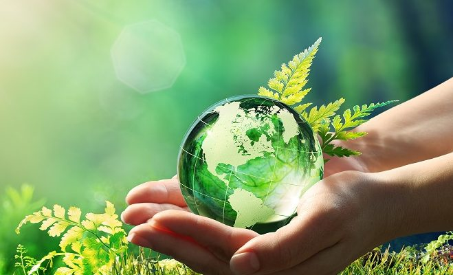 Global Sustainability in the Carpet Industry